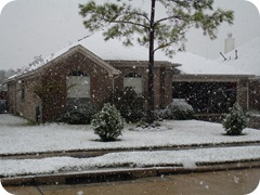 snow Dec 4 007
